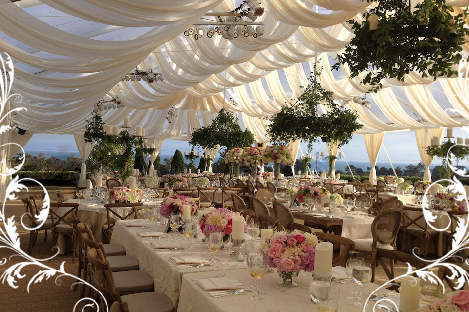shaded elegant beach reception
